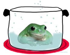 frog_pot.jpg